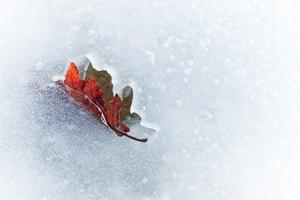 PantherMedia Themenwelt: Herbst & Winter