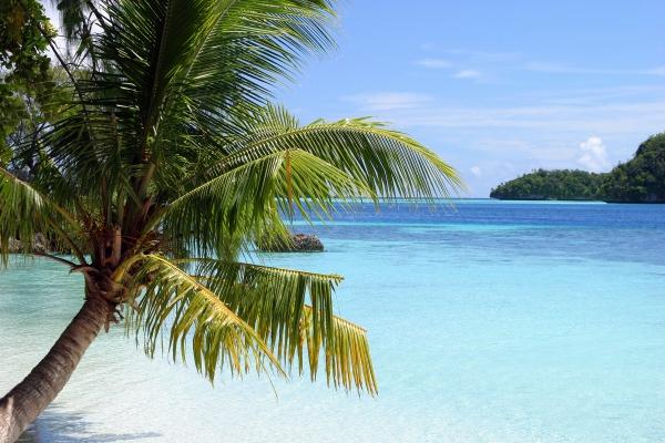 caribbean dreams i