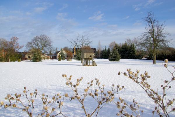 garten im winter garden