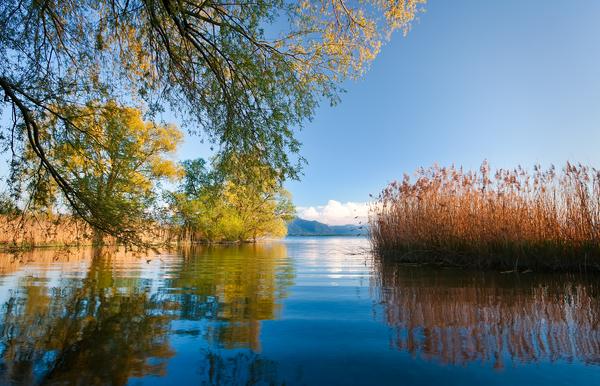 idyllische bucht am chiemsee