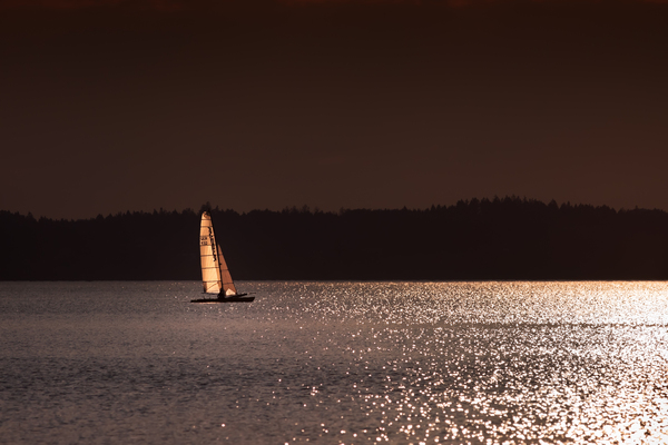 sailing into the light