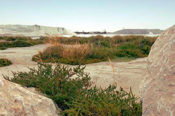 die salzfelder salin de giraud