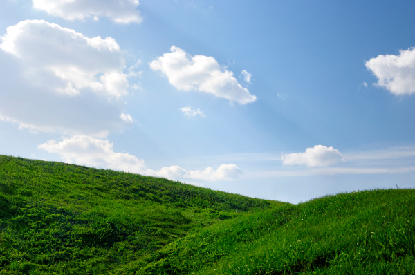 grasbewachsenen huegel unter blauem himmel