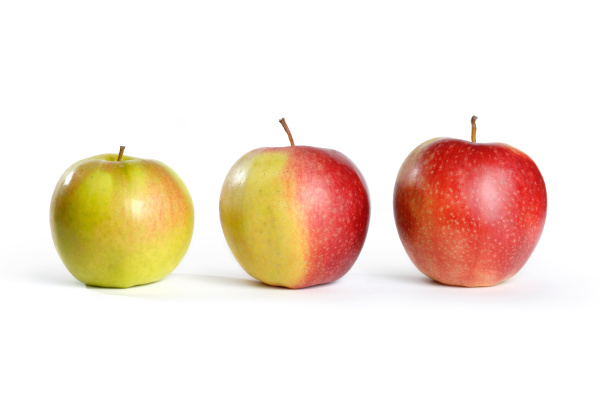 drei aepfel von gruenem zum rot