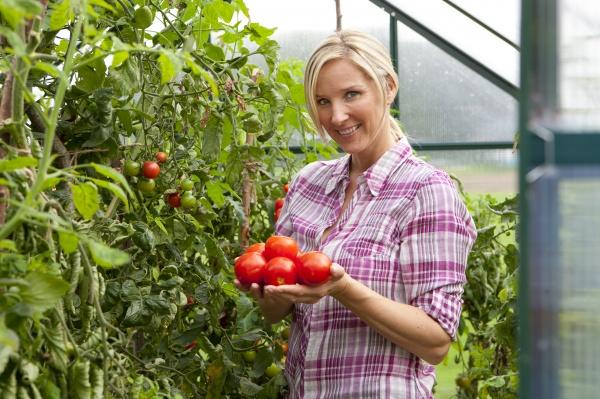 lachende frau kommissionierung reife tomaten im