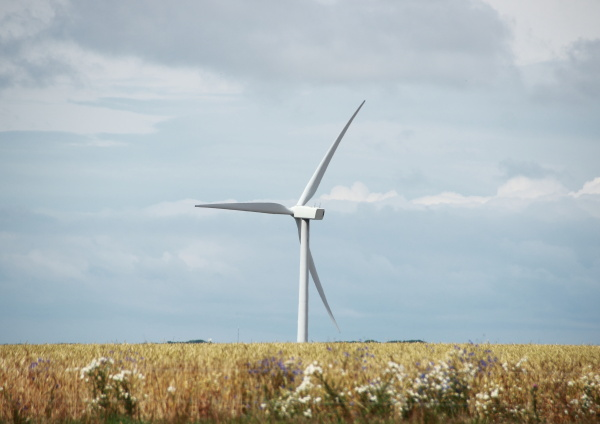 single, windmill, in, grass, field, with - 12883478