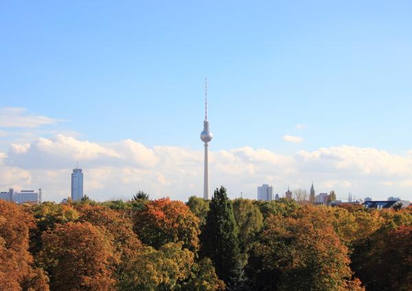 skyline von berlin deutschland mit herbstwald