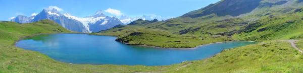 bachalpsee blauer bergsee alpenwiesen bergkette