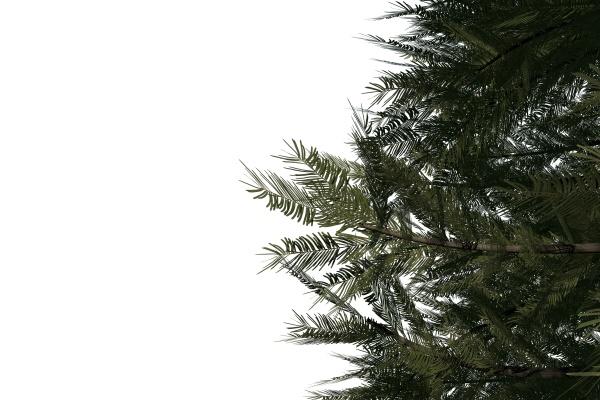 digital generierter gruener tannenbaum