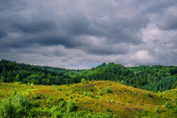 dunkle wolken ueber der gruenen natur