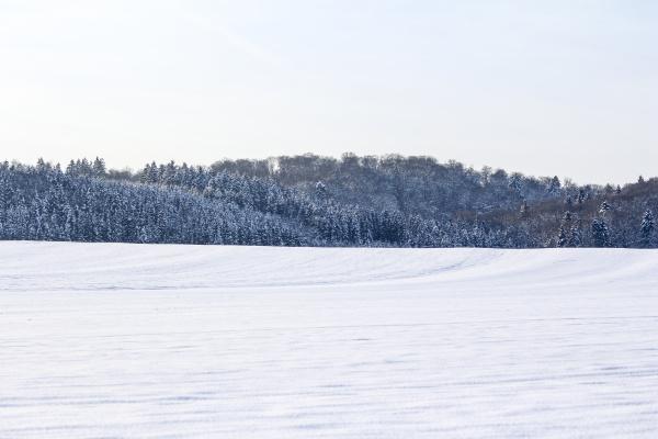grosse winter wunderland