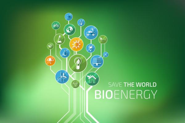 oekologie infografik bio energie