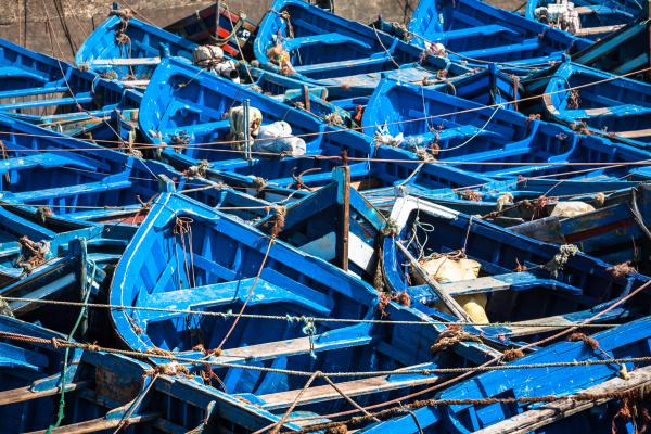 lots blaue fischerboote im hafen von