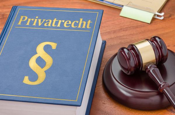 gesetzbuch mit richterhammer privatrecht