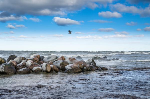 meereswellen die auf den felsen meerblick