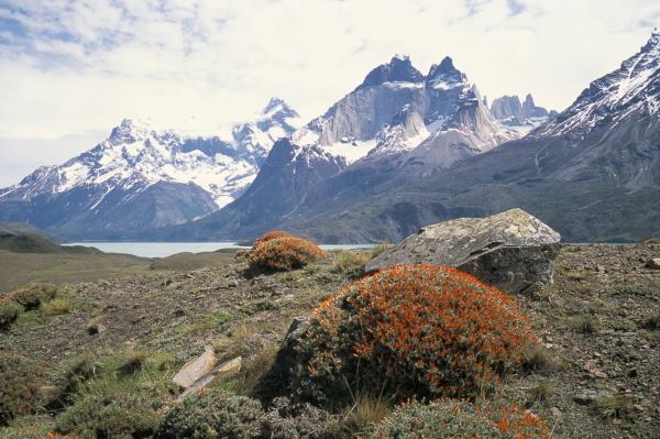 torres del paine nationalpark patagonien chile