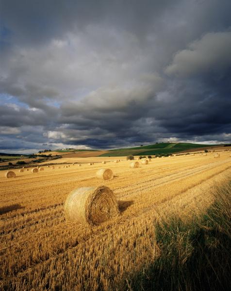 fahrt reisen umwelt farbe landwirtschaft ackerbau