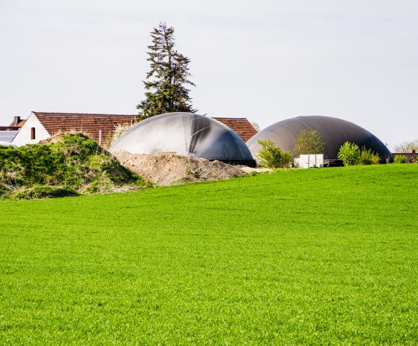 alternative energie mit bio technologie