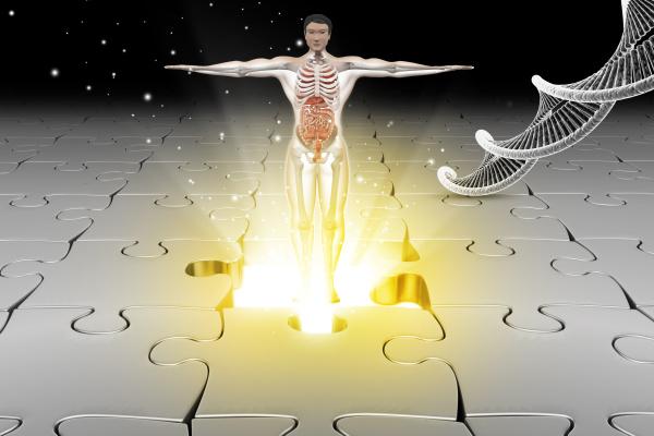 menschliche anatomie mit dna
