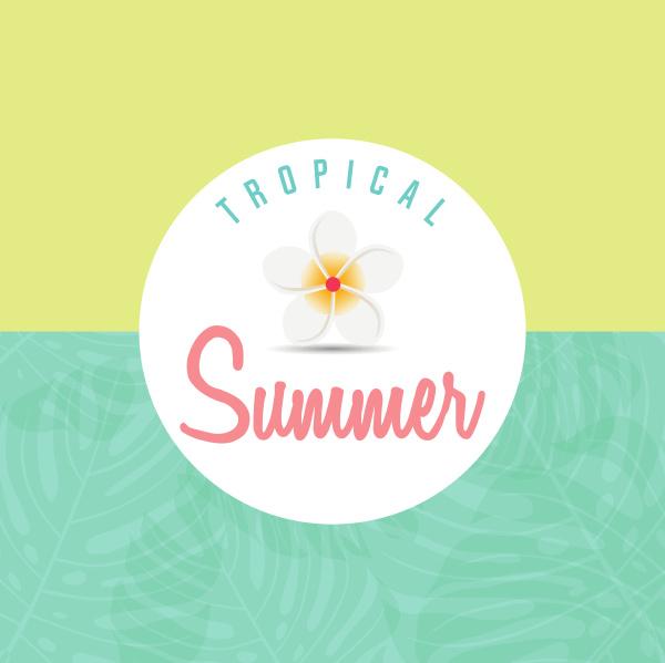 trendige sommer tropische blaetter sommer hintergrund