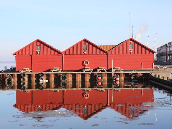 rotfisch bauten im winter mit reflexion
