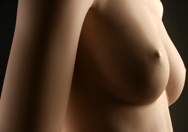 weibliche buste nackter busen einer