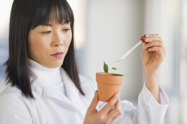 experiment wissenschaft forschung landwirtschaft ackerbau botanik