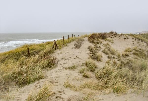 coastal beach scenery