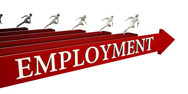 lösungen, für, die, beschäftigung - 24369772