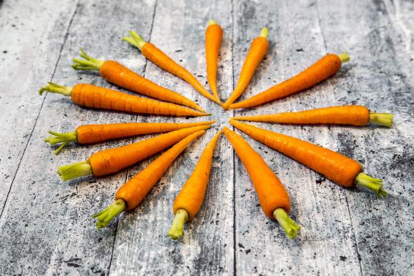 orange apfelsine pomeranze bestellen ordern essen