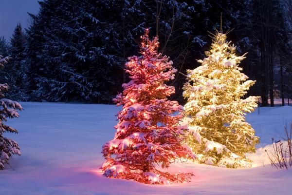 symbolisch feiertag urlaub urlaubszeit ferien winter