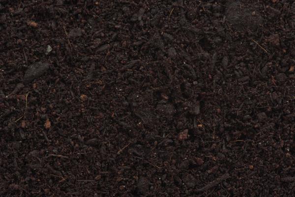 organisch blumenerde mix nahaufnahme der textur