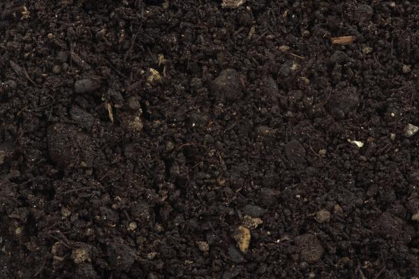 kompost organischer duenger fuer bodennahaufnahme detail