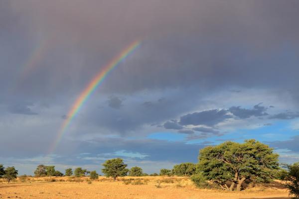 malerische landschaft kalahari wueste