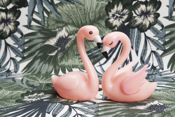 ein paar rosa kunststoff flamingos auf