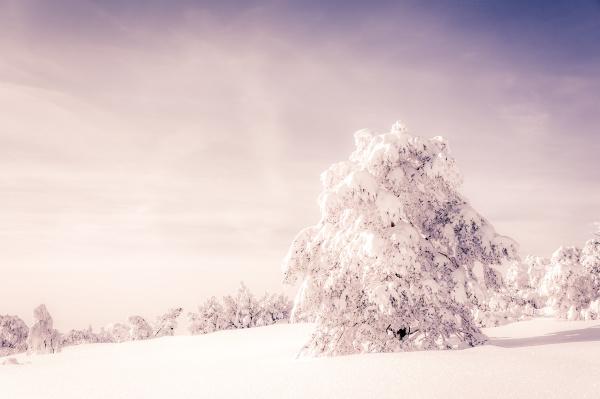 wolke daemmerung winterlandschaft niemand winter laendliche
