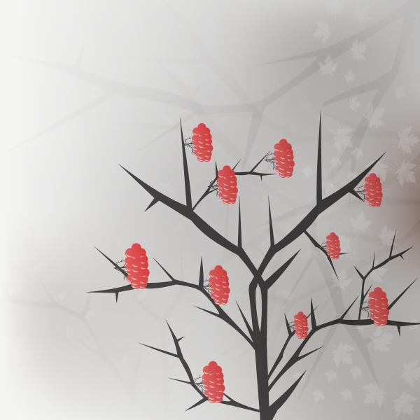 viburnum zweig mit roten beeren trauben