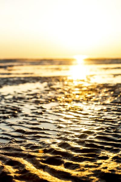 deutschland nordsee cuxhaven watt strand