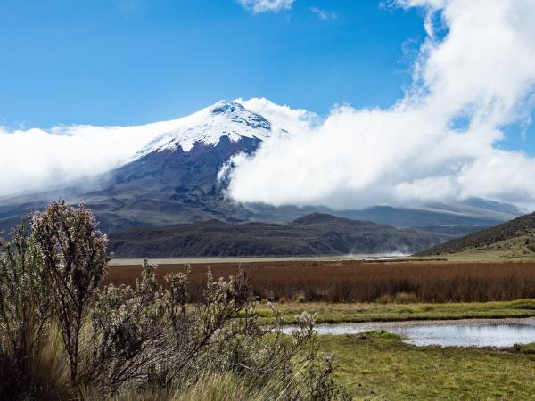 limpiopungo lake and cotopaxi volcano cotopaxi