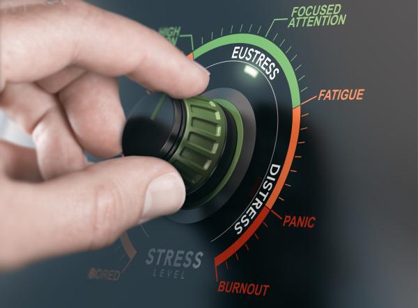 eustress positiver stress management