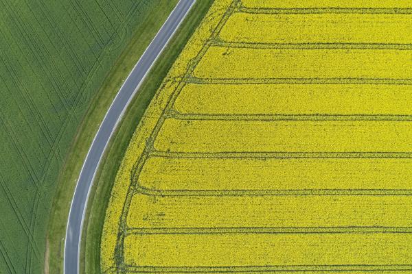 abstrakte luftaufnahme der landstrasse durch landwirtschaftliche
