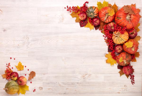 thanksgiving hintergrund herbsternte