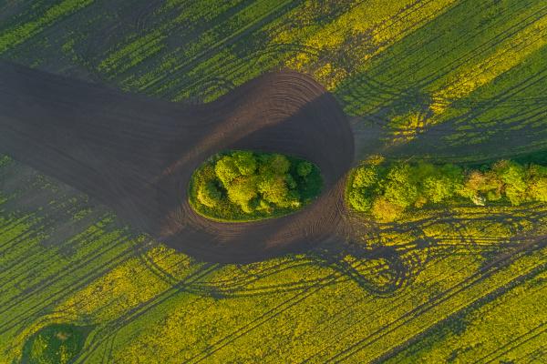 luftbild wiesenfeld in estland
