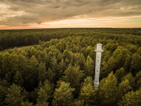 luftaufnahme eines leuchtturms mitten im wald