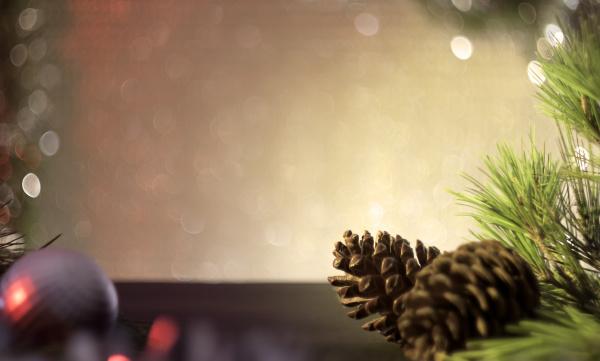 weihnachtskarte kiefernzapfen und zweige auf