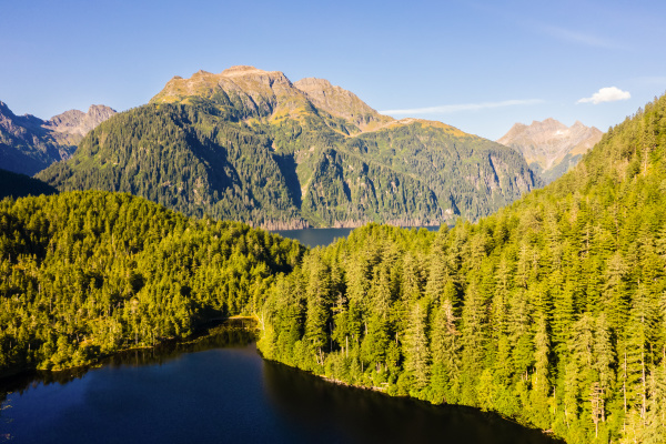 luftaufnahme von beaver lake tongass national