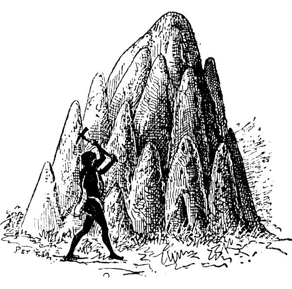 huegel oder termitaria von termite oder