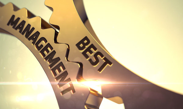 bestes management auf golden metallic zahnraedern