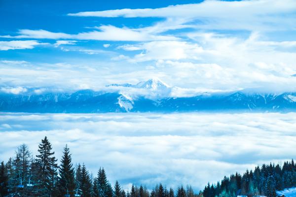 winterbaeume in den bergen naturlandschaft