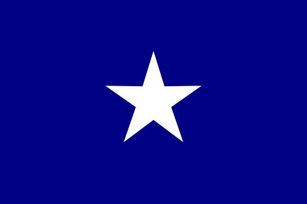 die bonnie blaue flagge